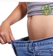 Расширенная программа снижения веса плюс